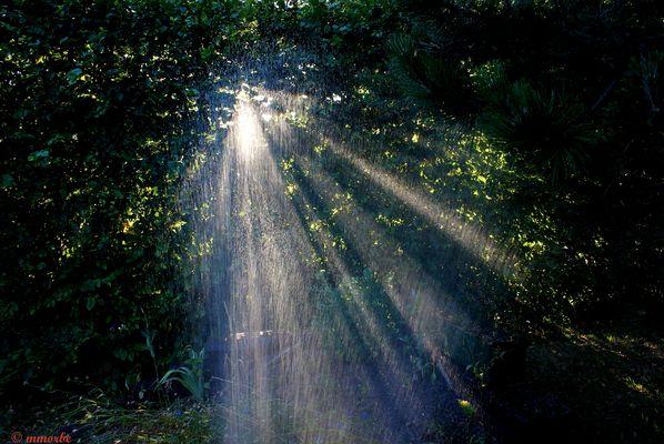 Percée de lumière
