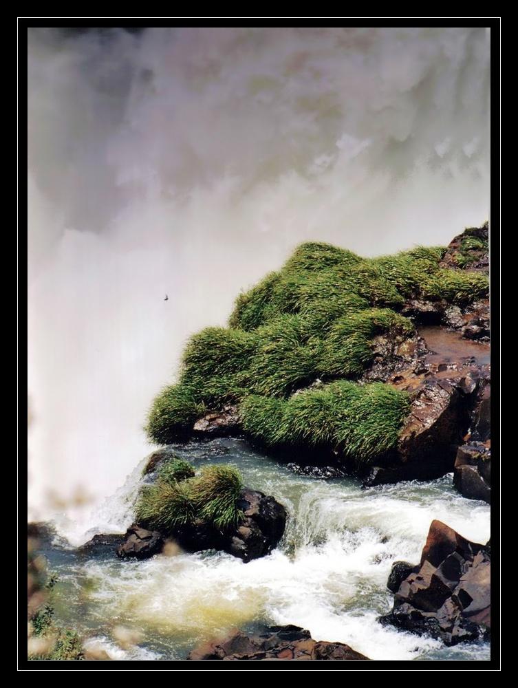 perdu dans les brumes aquatiques d'IGUAZU