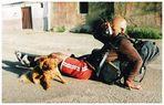 Peregrino tirando fotos de um cachorrinho (Camino francés, 6)