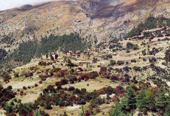 Perfekt angepaßt - Dorf in Nepal