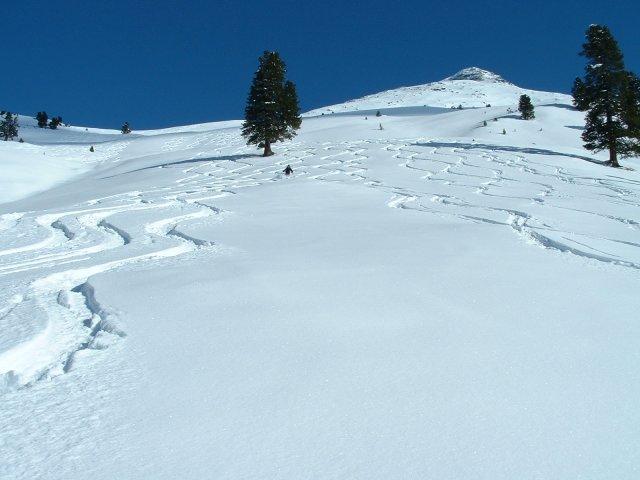 Perfekter Schnee