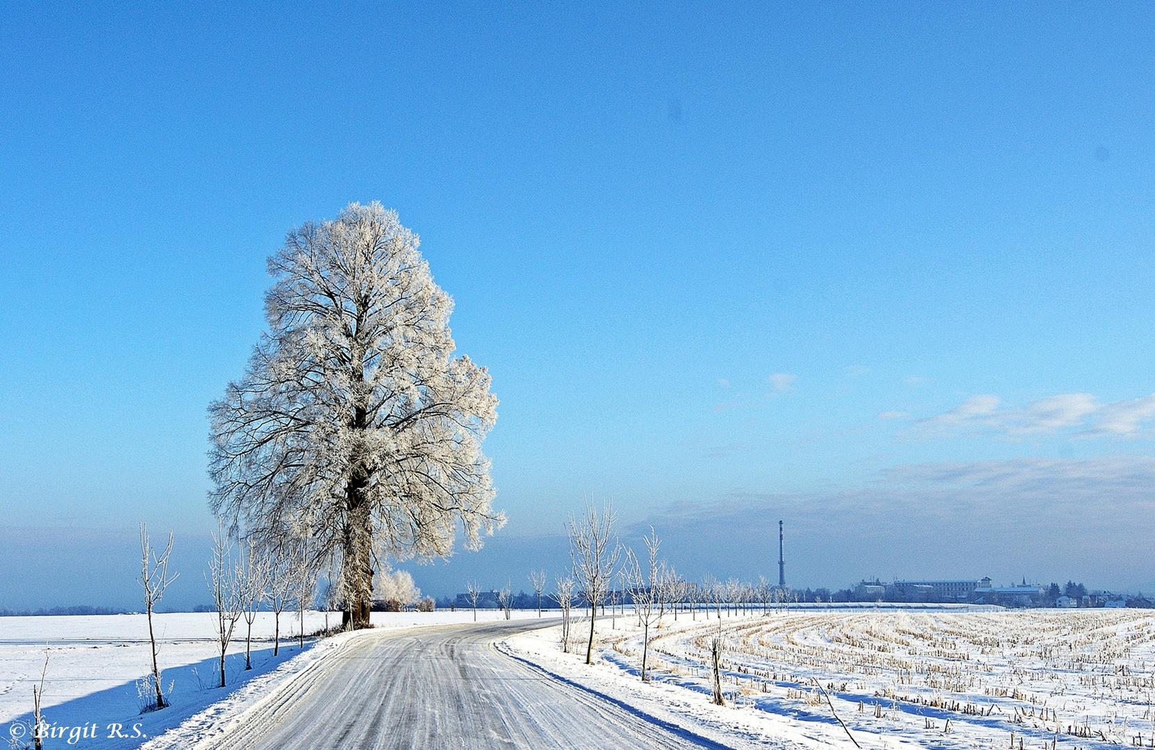 Perfekter Wintertag in Böhmen