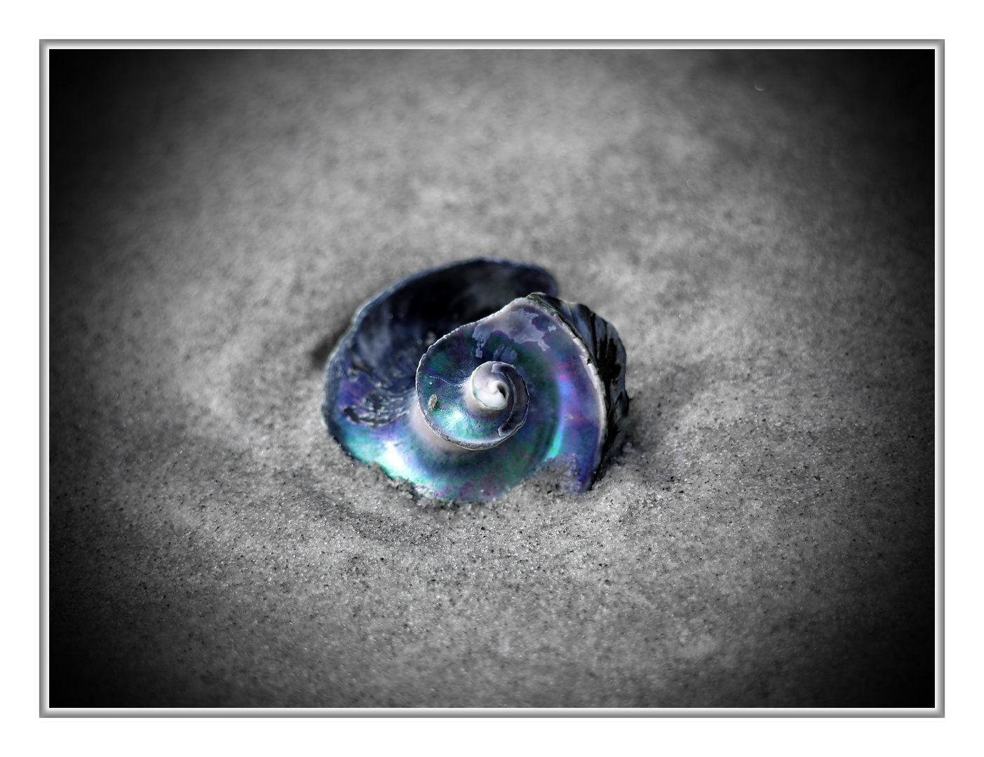 Perle mit Mut(t)