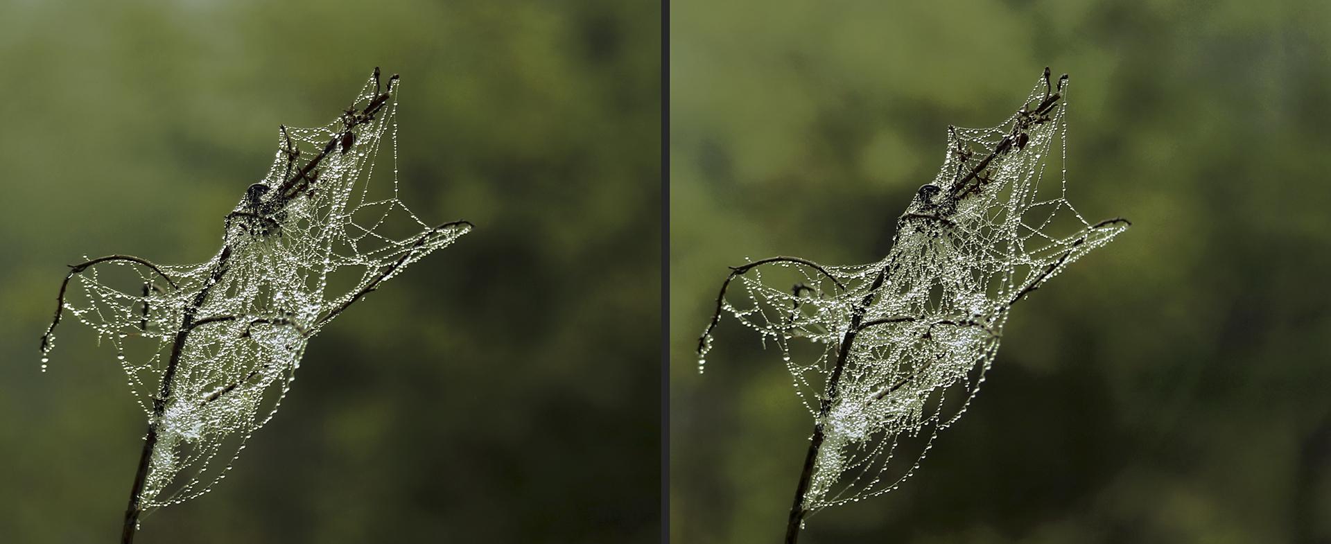 Perlenkette 2 (3D)