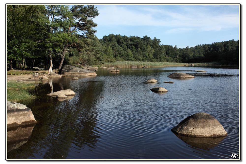 Perles de granite sur le lac du merle