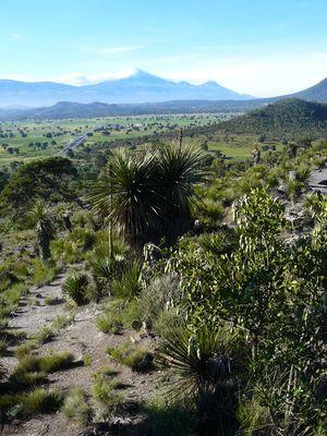 Perote Mexico