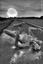 perro muerto a la orilla de la vía