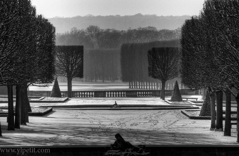 Perspective enneigée dans le parc du chateau de Versailles