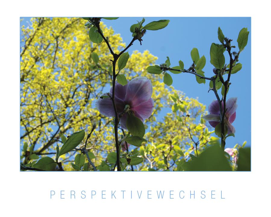 Perspektivewechsel