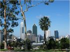Perth Skyline vom Kings Park