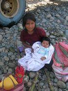 Peru - Manu - Madre de Dios