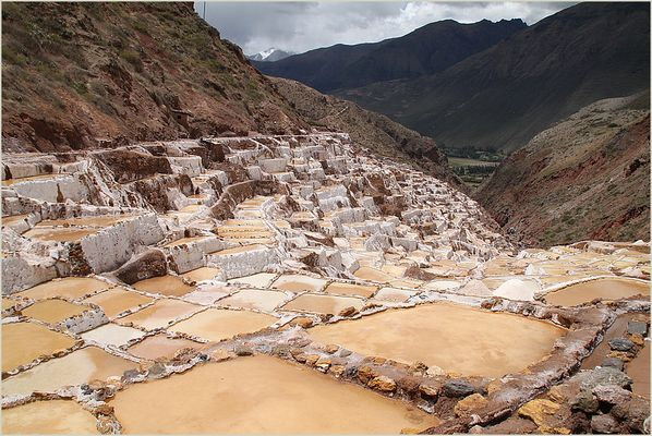 Peru Salinas