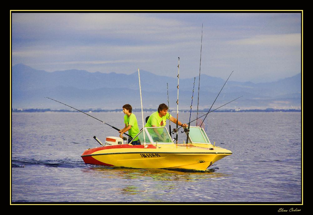 Pesca al por Mayor