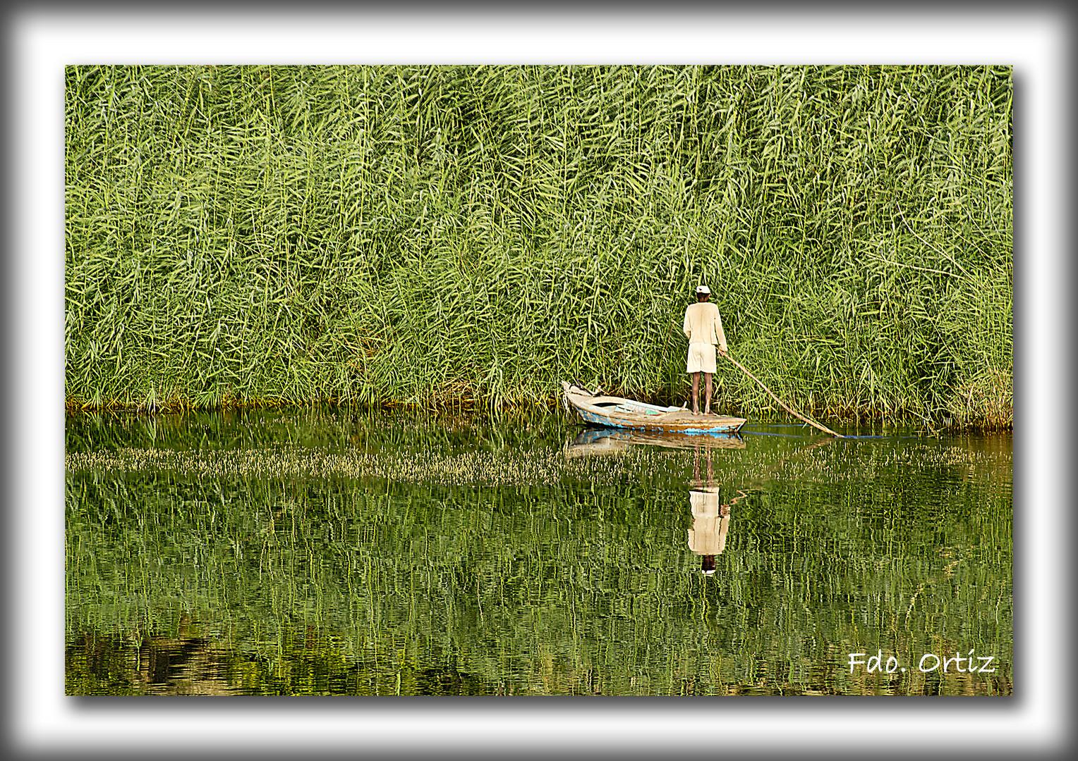 Pescador del Nilo