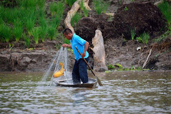 Pescando