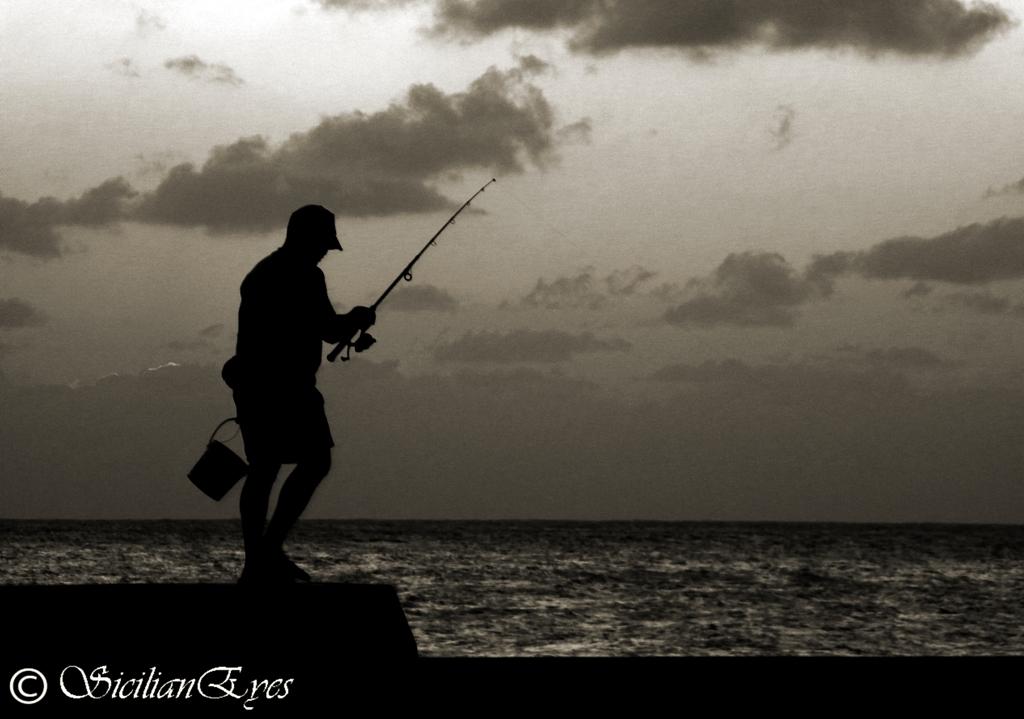 Pescando a contraluz...