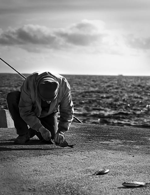 Pescando la cena