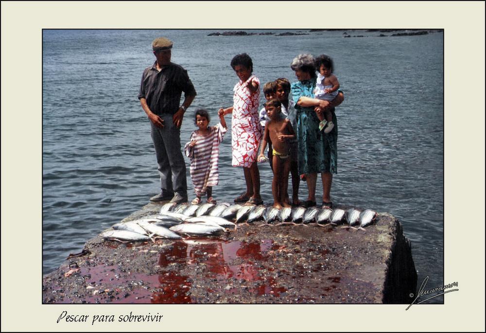 Pescar para sobrevivir