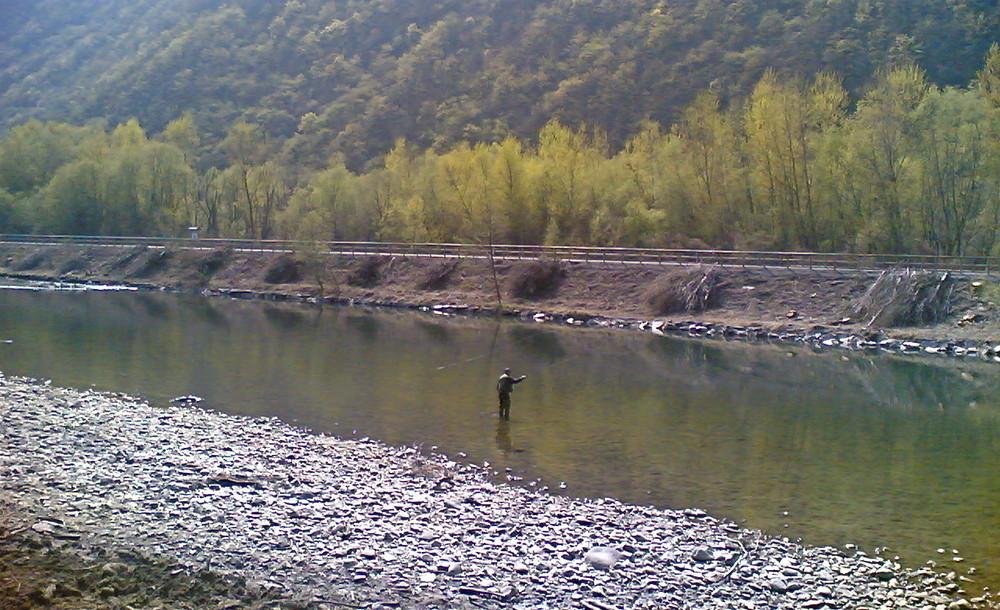 pescare è bello