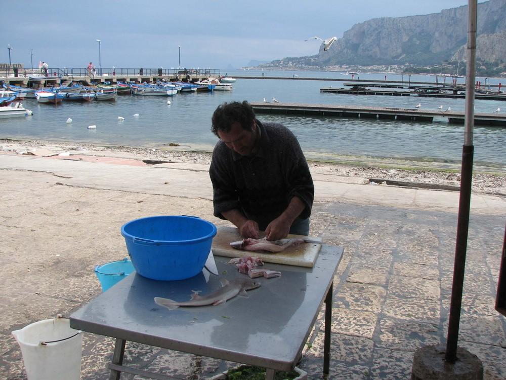 Pescatore e....pescato