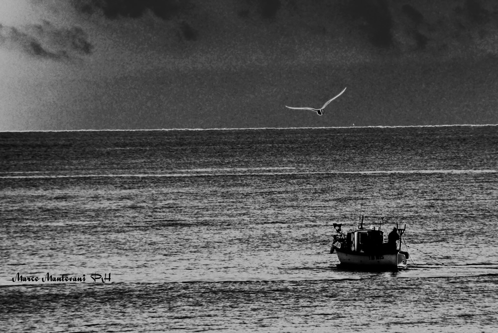 Pescatori d'altura