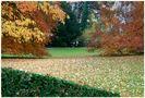 Pestalozzianum-Park von Klauser