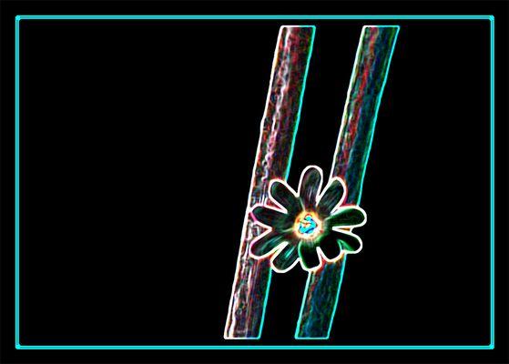 Petit Fleur II