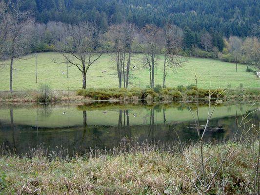 Petit lac vogien