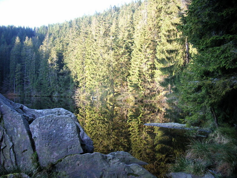 petit matin sur le Glaswaldsee