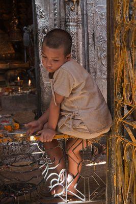 petit moine