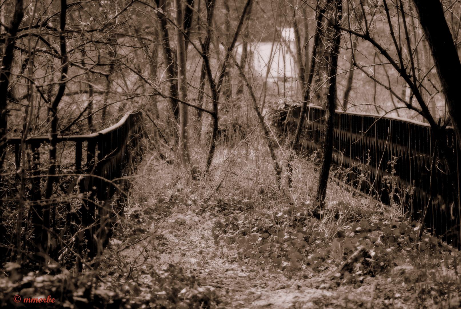 Petit pont abandonné