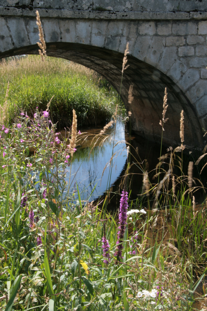 Petit pont du Jura