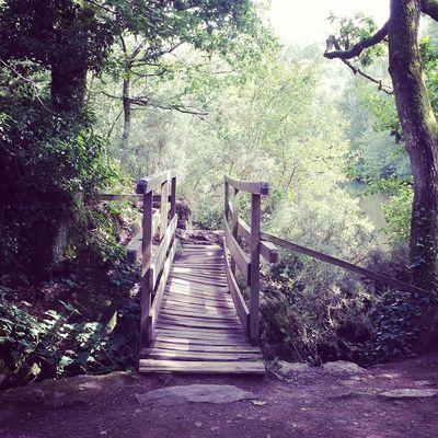 Petit pont du val sans retour