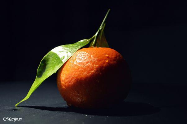 Petite Fruit