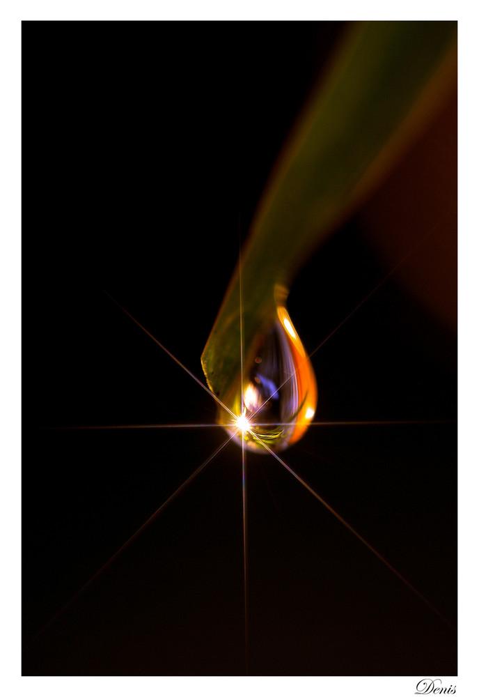 Petite goutte de lumière