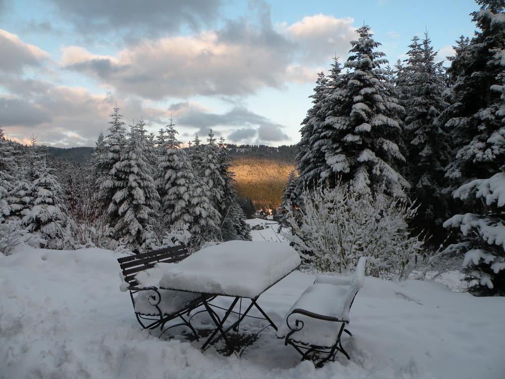 Petite pause en Forêt Noire.