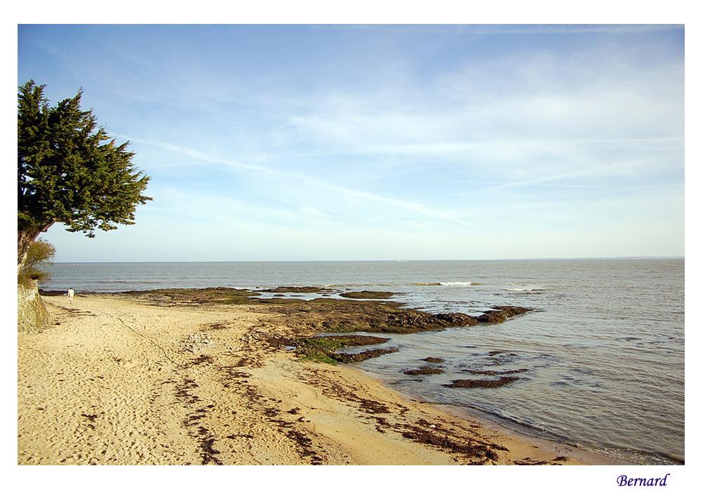Petite plage vendéenne