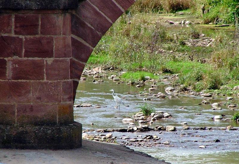 Petite promenade au fil de l'eau