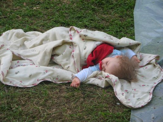 Petite sieste dans la nature