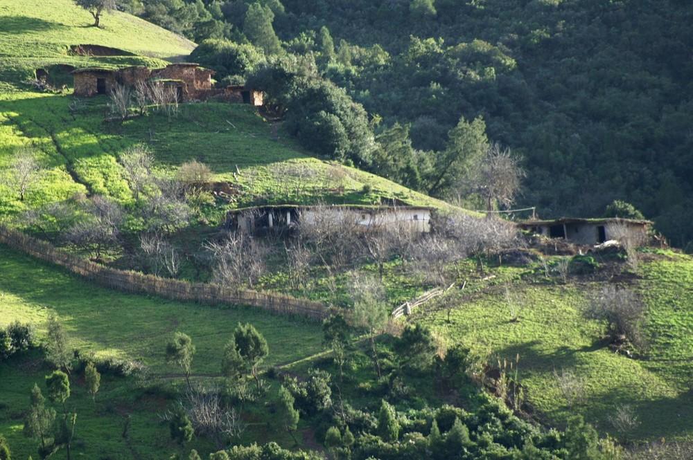 Petites maisons dans la campagne