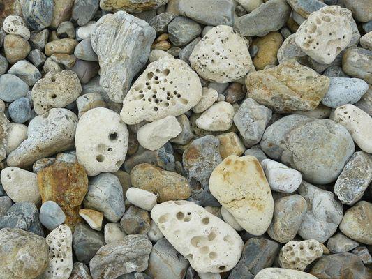 Petits caillous de la plage