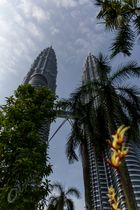 Petronas Towers in the Green