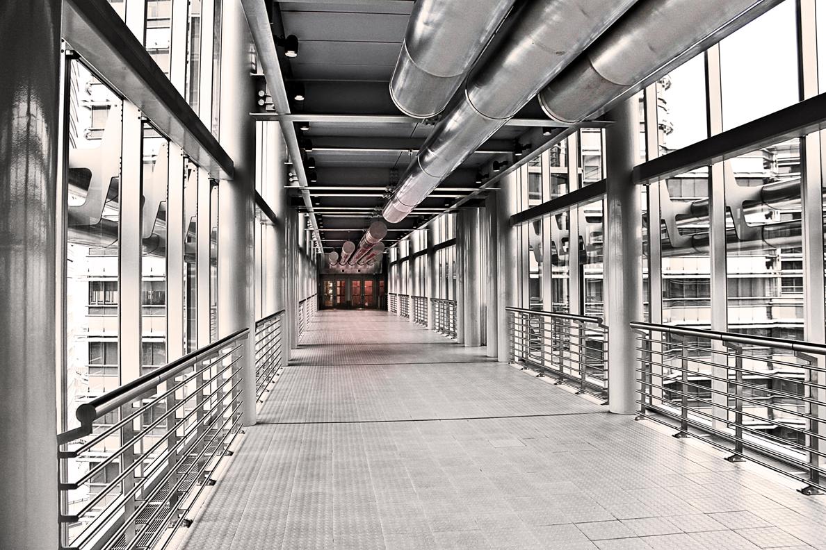 Petronas Towers - The Bridge