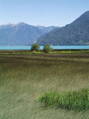 Peulla - Blick auf den Lago Todo Los Santos