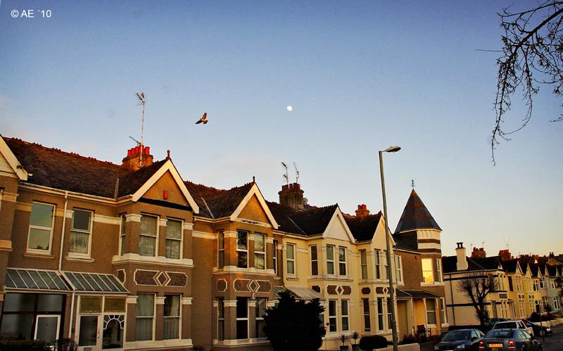 Peverell - Plymouth/England