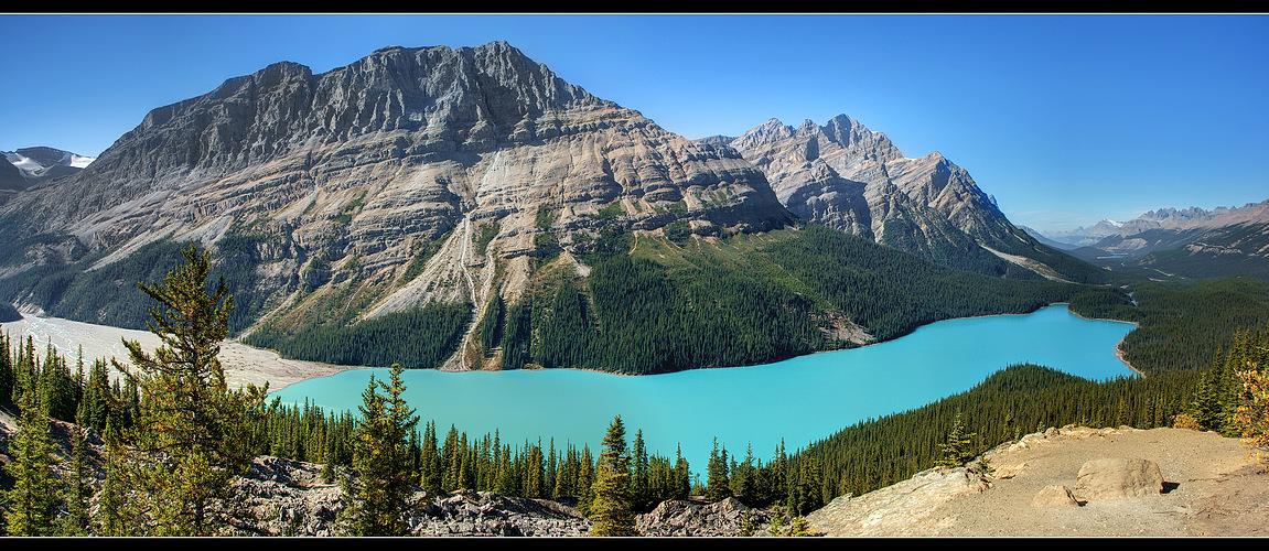 Peyto Lake ------ Canada / Alberta