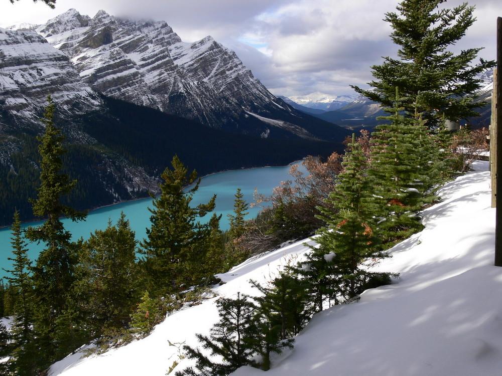 Peyto Lake in Kanada