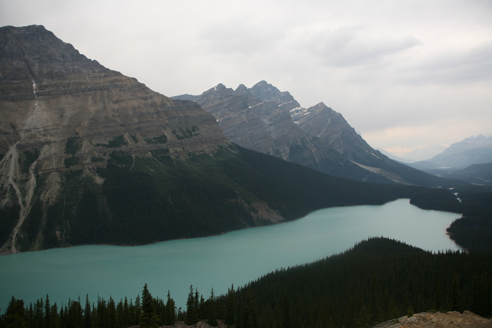 Peyton Glacer (Canada)