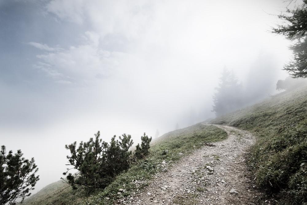 Pfad in den Nebel