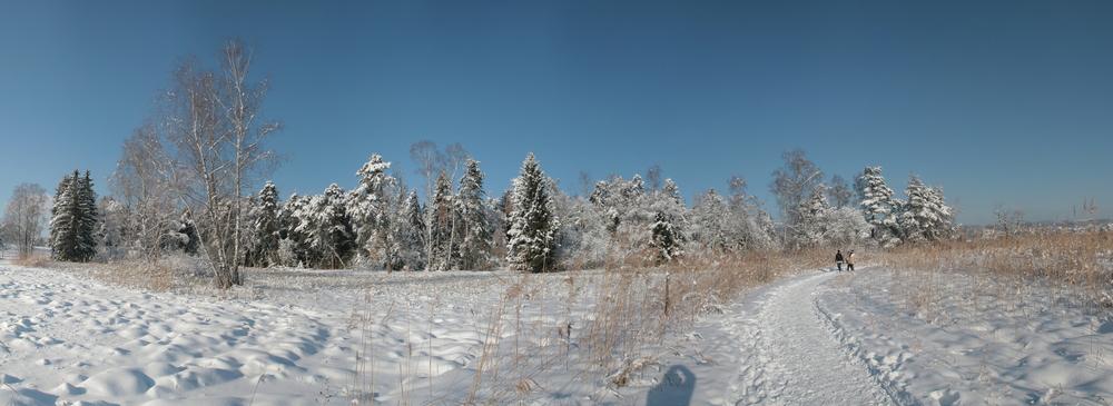 Pfäffikersee 2010 -1